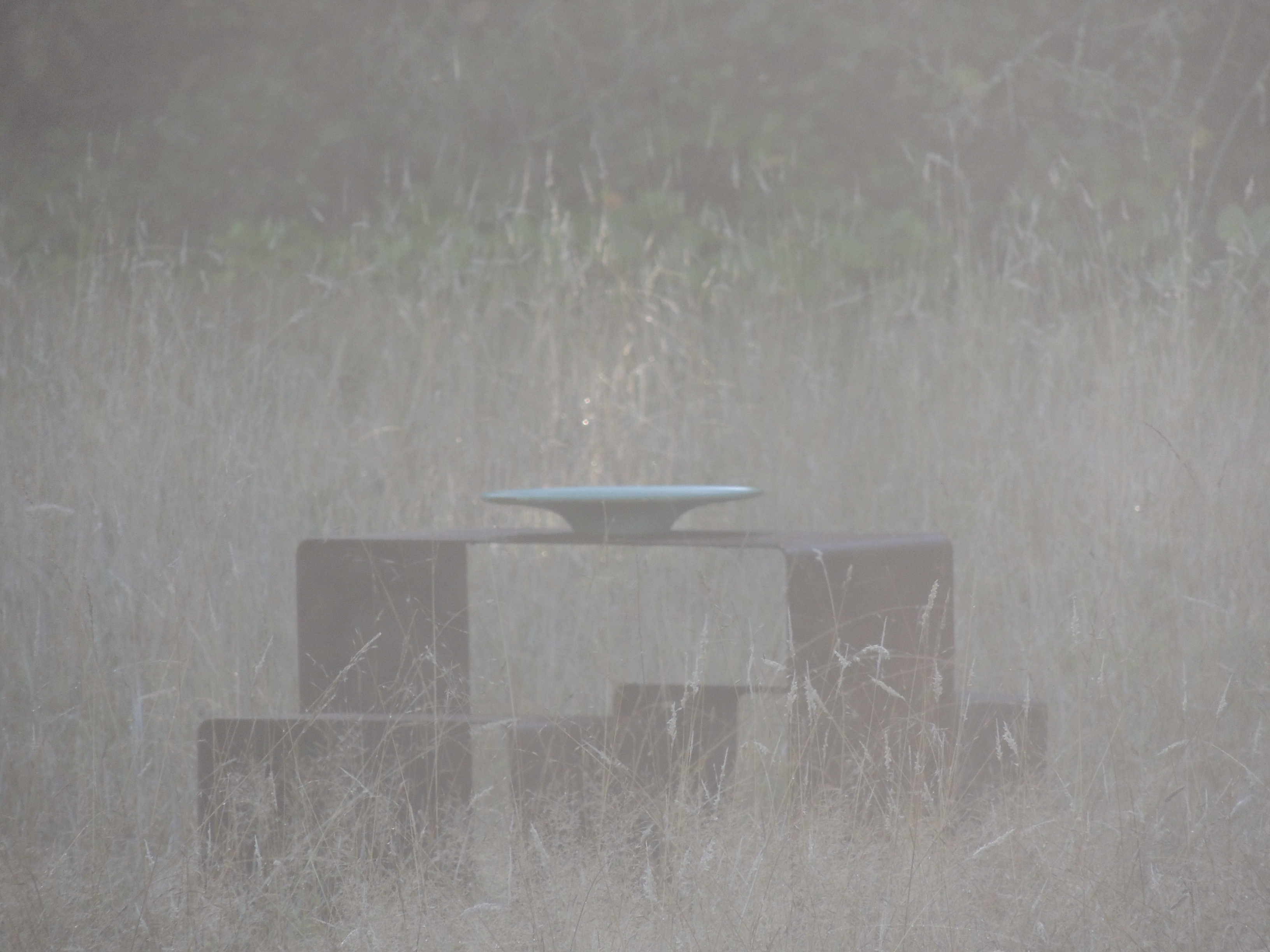 CASUDI~FOG~METALTABLE