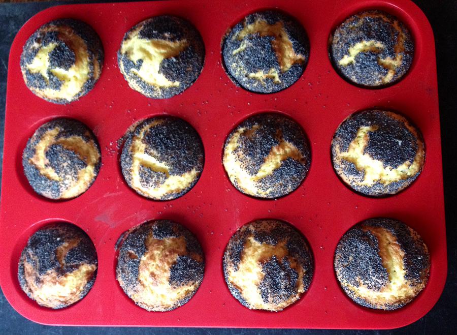CASUDI~muffins