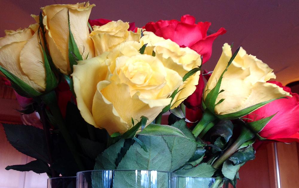 CASUDI~Easter~Roses